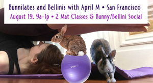 Bunnies and Bellinis Aug 19